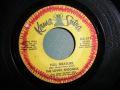 Lovin' Spoonful, The-Nashville Cats / Full Measure