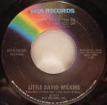 Little David Wilkins-Butterbeans / Whoever Turned You On, Forgot To Turn You Off