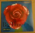 Peter Gabriel-Big Time