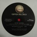 Peter Gabriel-red rain