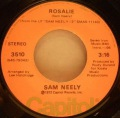 Sam Neely-Rosalie / Try To Reason Why