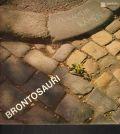 Brontosauri-Na kameni kamen