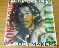 Ziggy Marley, The Melody Makers