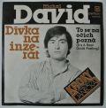 Michal David, Kroky Františka Janečka