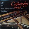 Čajkovskij - Valentina Kameníková / Státní Filharmonie Brno / Jiří Pinkas