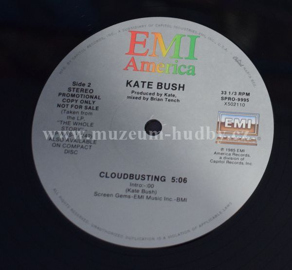 Kate Bush-Cloudbusting - Product detail | online vinyl shop