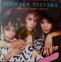 Pointer Sisters -Twist My Arm